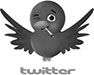 akseeds twitter